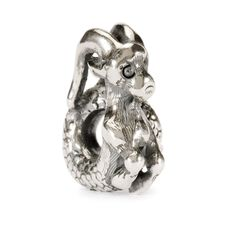 This is an image of the product Capricorn Bead