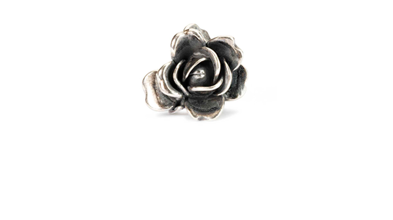 Rose of June in sterling silver and hiding a beautiful freshwater pearl under its petals.